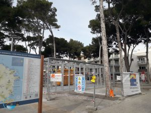 Cala Ratjada News vom Pinienplatz